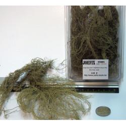 Arbustos fino alargado, Marca Joefix, Ref: 118.