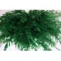 Ramitas verdes finas, Marca Joefix, Ref: 170.