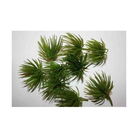 Nam arbusto X, Marca Joefix, Ref: 213.