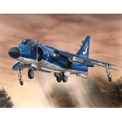Sea Harrier FA.2.  Escala 1:72. Marca Special Hobby. Ref: 72154.