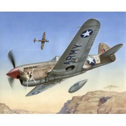 """P-40 F Warhawk """"Colas cortas sobre África"""". Escala 1:72. Marca Special Hobby. Ref: 72155."""