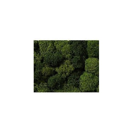 Musgo de decoración, color verde, bolsa 75 gramos, Noch, Ref: 08621