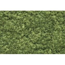 Follaje verde claro, Ref: F51.