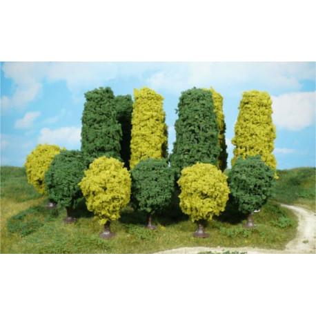 Surtido de 24 arboles de hoja caduca, entre 6 y 12 cm, Marca Heki, Ref: 1321.